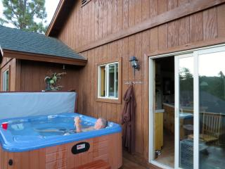 Big Bear 2 bd with Spa close lake,Village & skiing - Big Bear and Inland Empire vacation rentals