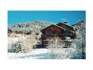 Chalet Bonbon - Meribel vacation rentals