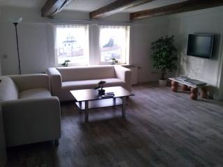 Fun on holiday in the German Harz Mountains? Ideal for nature lovers and bikers. - Lower Saxony vacation rentals