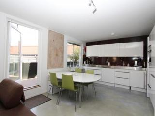 Modern studio in Stockholm city center - Stockholm vacation rentals