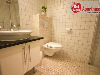 Beautiful 1 bedroom apartment next to Oslo's Frogner Park - Norway vacation rentals