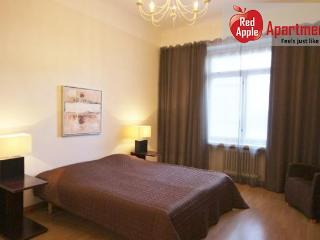 Spacious apartment in central Helsinki - Finland vacation rentals