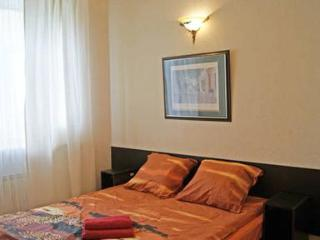 Studio with free WIFI near Kazansky Cathedral - Saint Petersburg vacation rentals