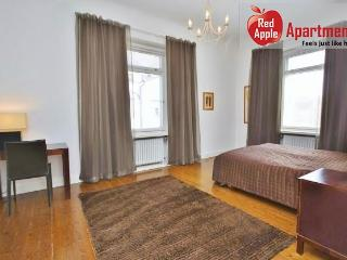 Spacious downtown 1 bedroom apartment - Finland vacation rentals