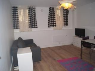Fully Renovated Apartment in the Heart of Frogner - Norway vacation rentals