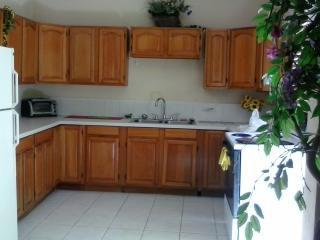 2 bed. lower-Special 7 nights 1 FREE! - Hamilton vacation rentals