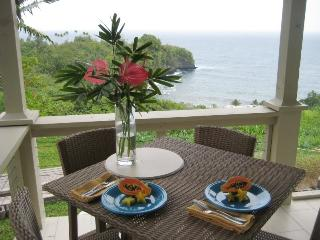 Onomea Bay Cliffside Cottage - Papaikou vacation rentals