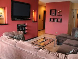 EcoVida Condo Luxury Accommodation Escazu - Central Valley vacation rentals