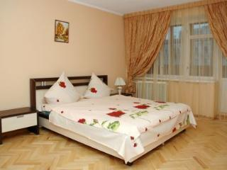 Apartment Basseynaya Yellow - Kiev vacation rentals