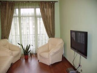 Apartment Kreschatik - Kiev vacation rentals