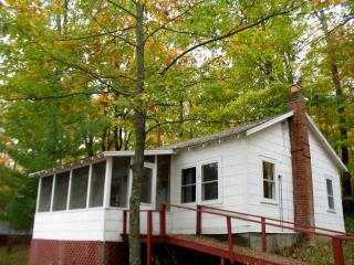 Lakeside middle  cabin - Hayward vacation rentals