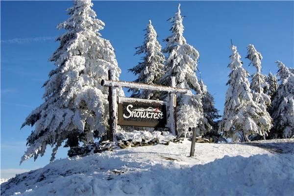 Snowcrest #306A - Image 1 - Snowshoe - rentals