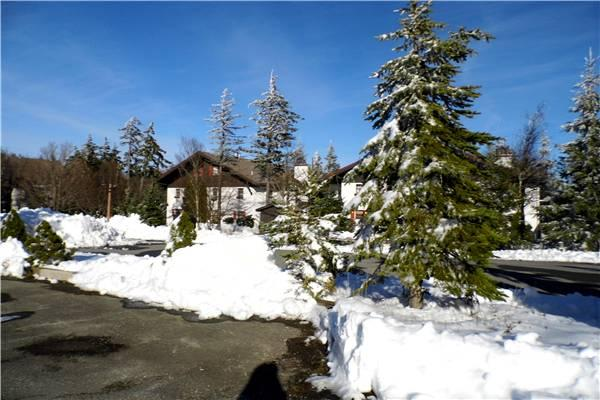 Whistlepunk #37 - Image 1 - Snowshoe - rentals