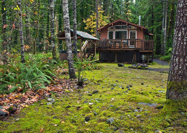 Riverwood Hideaway along the Sandy River in Brightwood, Oregon - Riverwood Hideaway-Secluded romantic getaway, riverfront, hot tub. Dogs ok. - Brightwood - rentals
