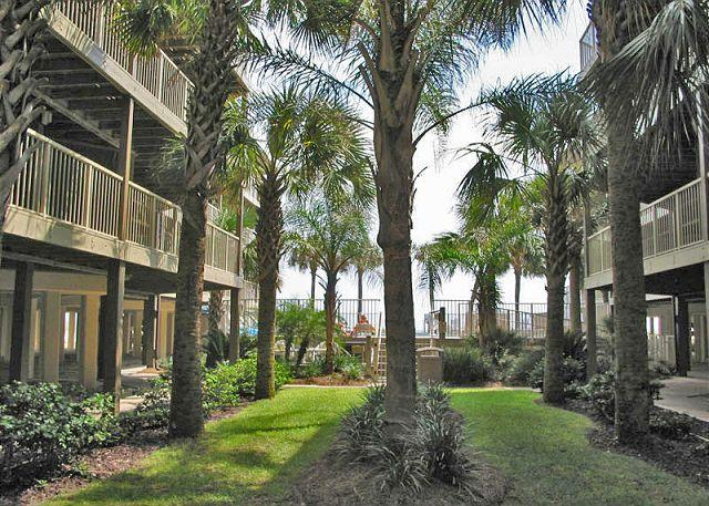 Courtyard - Sandpiper 3B ~ Fully Equipped Beachside Condo - Gulf Shores - rentals