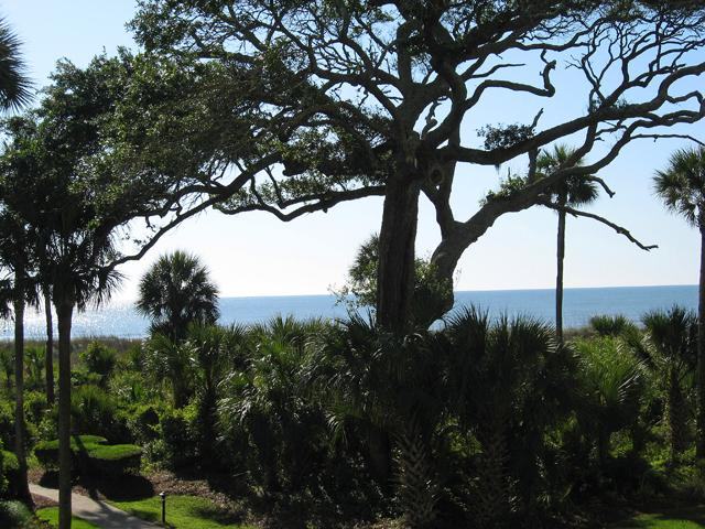 3109 Windsor Court - Image 1 - Hilton Head - rentals