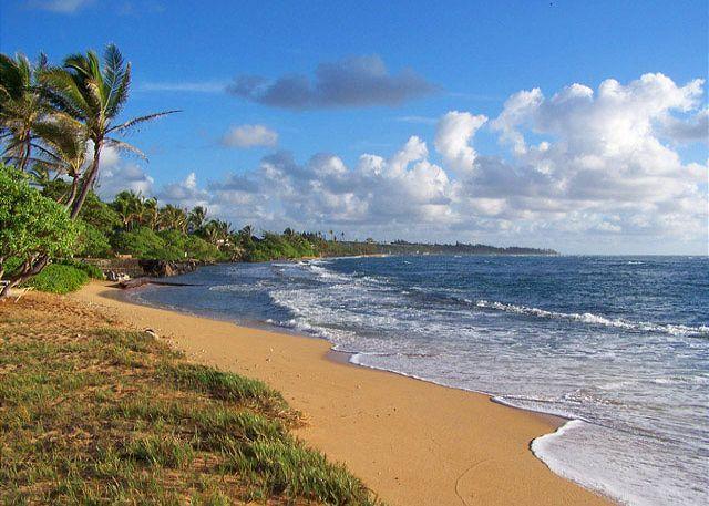 Waipouli #A-303: 2bdr/3 bath Beach Front Property - Image 1 - Kapaa - rentals