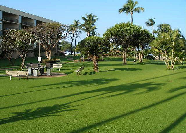 Maui Sunset 108A ~ Ground Floor, Perfect for Families! - Image 1 - Kihei - rentals