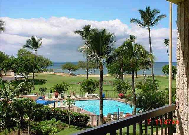 MS313A/Ocean view - Maui Sunset 313A - Kihei - rentals