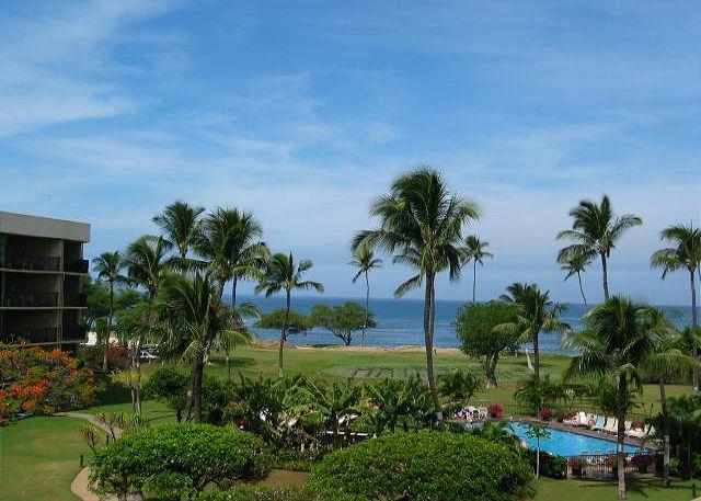 Maui Sunset 409A - Image 1 - Kihei - rentals