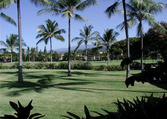 View from the large lanai - Garden View, 2 bedroom, 2 bath condo with AC - Kailua-Kona - rentals