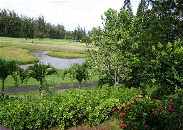 View from Lanai - The Darrolee **  Available for 30 night rental, please call - Kahuku - rentals
