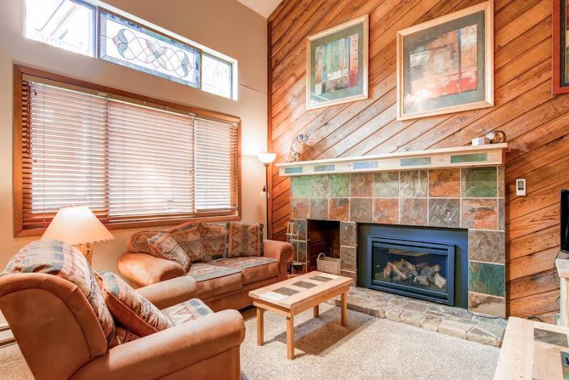 Cedars 2 - Ski-In/Ski-Out - Image 1 - Breckenridge - rentals