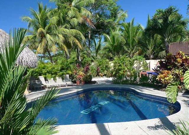 Pool and palm thatched Gazebo - Beachfront rustic luxury villa, pool, gazebo, BBQ, hammocks, WiFi, sleeps 4-8 - Jaco - rentals