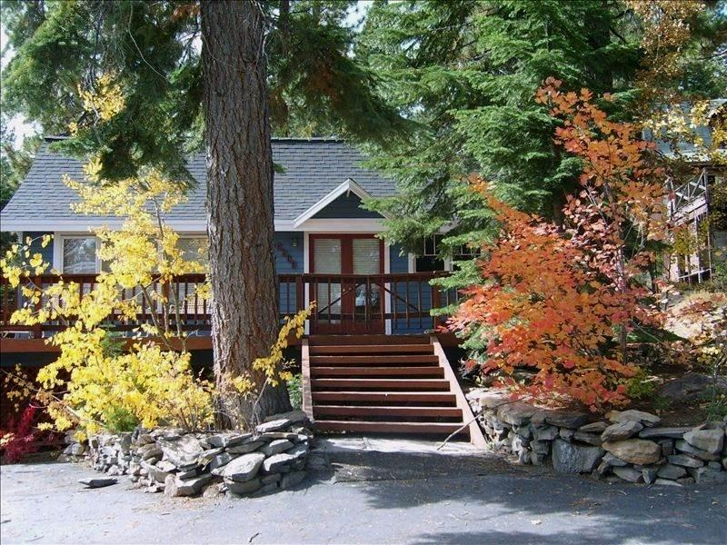 201 Cozy Hot Tub Cabin - Image 1 - Tahoe City - rentals