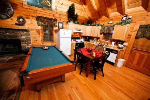 Bear Mountain - Image 1 - Sevierville - rentals