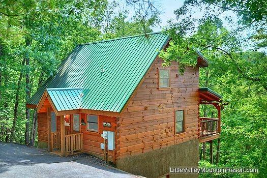 Cabin Fever - Image 1 - Sevierville - rentals