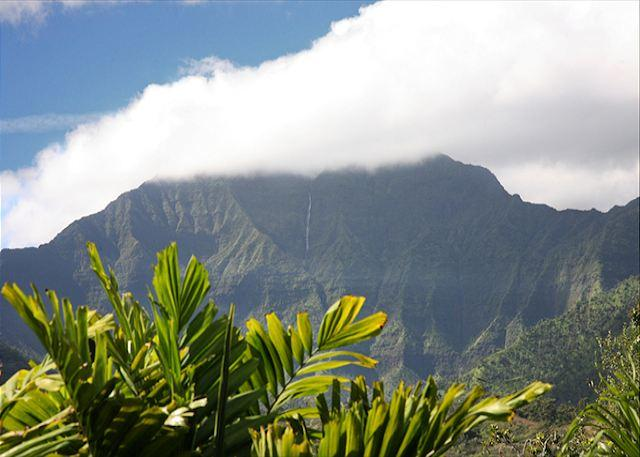 Hanalei - Spacious with Amazing Mountain Views & A/C!! - Image 1 - Hanalei - rentals