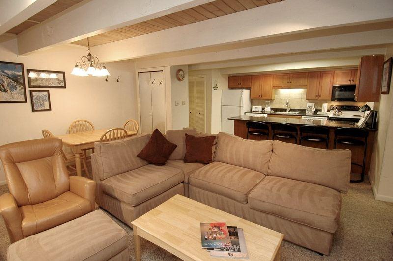 living_area_1.jpg - Chateau Chumont Unit 5 - Aspen - rentals
