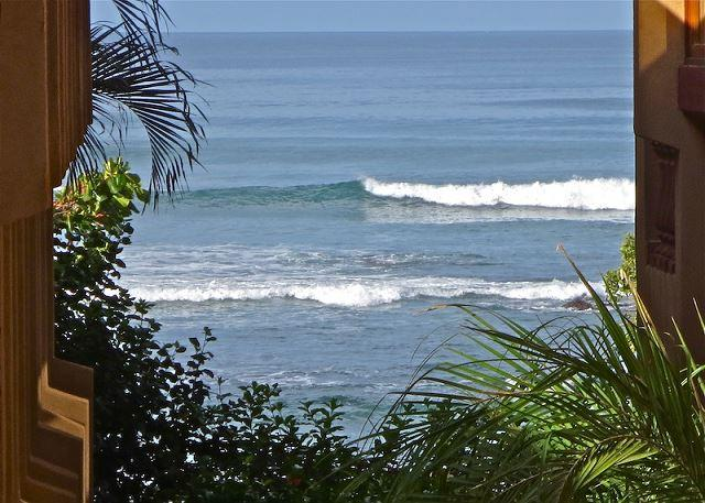Beautiful beachside condo- shared pool, cable, internet, a/c, kitchen - Image 1 - Tamarindo - rentals