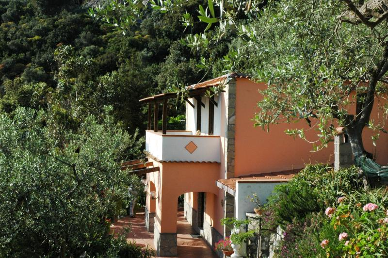 Small House Near Mass Lubrense on the Amalfi Coast - Delfino - Image 1 - Termini - rentals