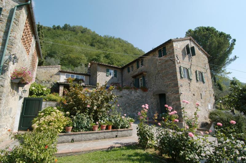 Apartment near Lucca - L'Asilo 1 - Image 1 - Matraia - rentals