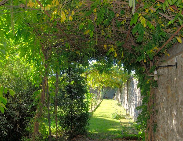 Tuscan Villa Rental - Villa La Corte - Image 1 - Lucca - rentals