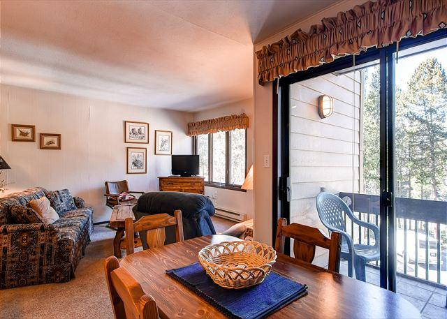 Asgard Haus Living Room Breckenridge Lodging Vacation Rentals - Asgard 502 Condo Downtown Breckenridge Colorado Vacation Rental - Breckenridge - rentals