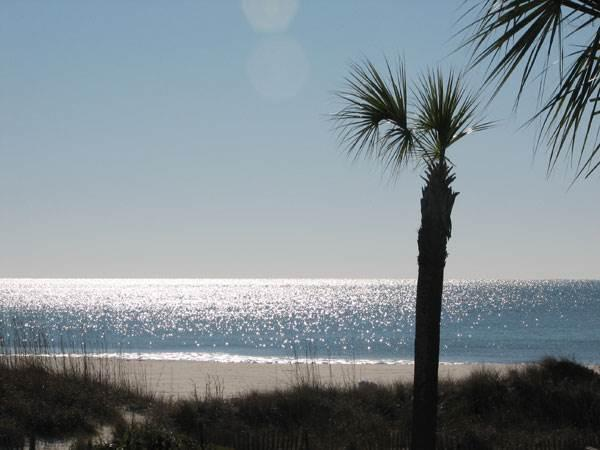 Breakers 112 - Image 1 - Hilton Head - rentals