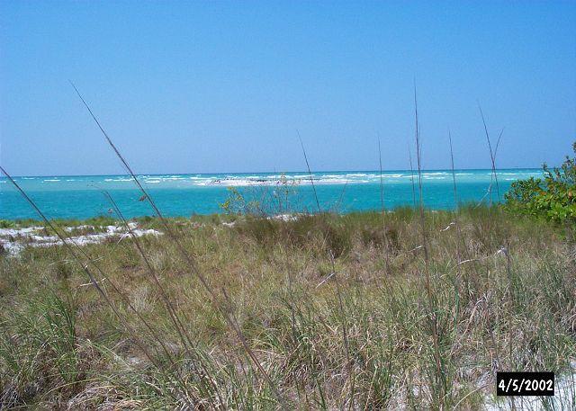 Beach with sea oats - Beach & Pool Villa at Palm Island Resort with All Resort Amenities - Cape Haze - rentals