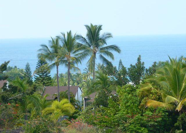 Country Club Villas #241 - Image 1 - Kailua-Kona - rentals