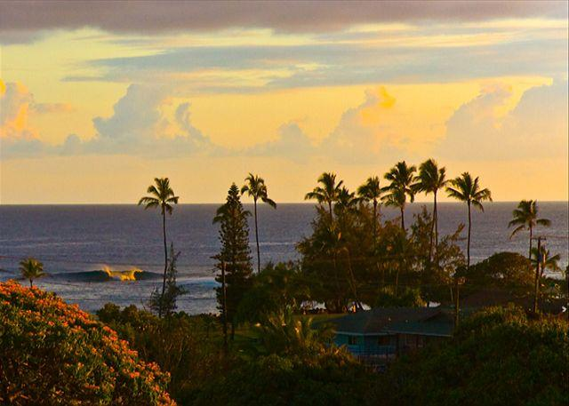 Poipu BEACH steps from your door!!  Sleep 4-8 **AVIS Van Included** WOW CALL! - Image 1 - Koloa - rentals