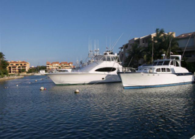 Las Palmas is the best location for Golf Lovers!!! - Image 1 - Puerto Aventuras - rentals