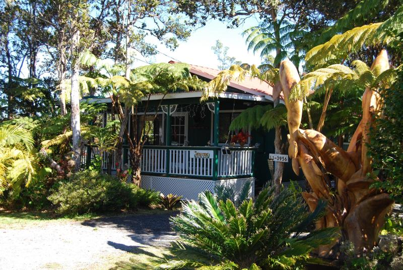 The Artist Cottage - Artist Cottage A Place with Heart,Warmth&Charm!! - Volcano - rentals