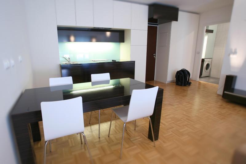 Apartment Aida Ljubljana - Image 1 - Ljubljana - rentals