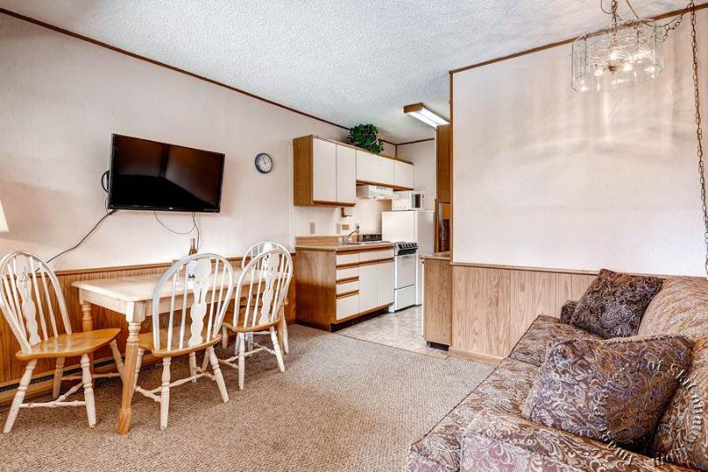 Park Meadows Lodge 6D by Ski Country Resorts - Image 1 - Breckenridge - rentals