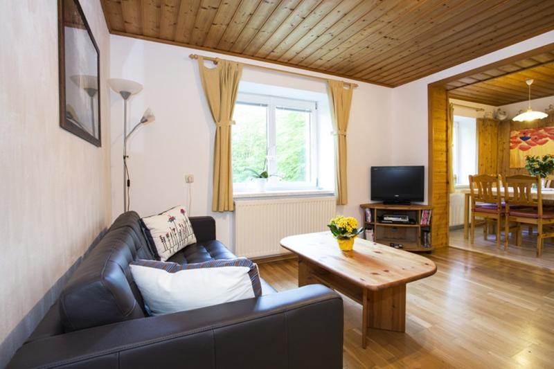 Lounge - Alpine Meadows apartment (Alpenwiesen Fewo) - Bad Ischl - rentals