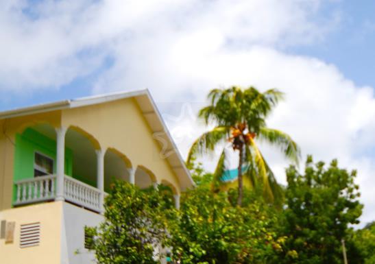 Ocean Palm View - Bequia - Ocean Palm View - Bequia - Lower Bay - rentals