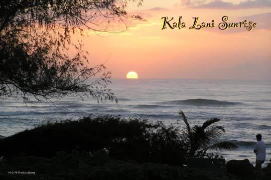 Kaha Lani Resort #103-From $118 per nite!King Bed! - Image 1 - Kapaa - rentals