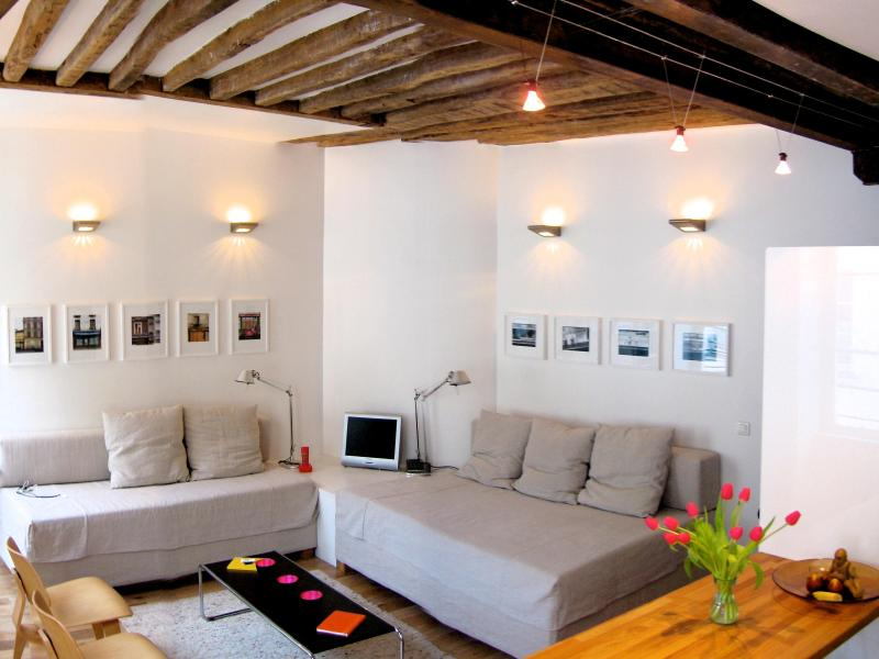 Spacious Living Area - Architect's Stylish Apt Marais/Bastille - Paris - rentals